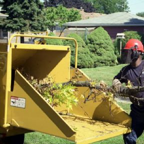 Avalon Assessments Ltd - Safe Use Of Manually Fed Wood Chipper (MFWO)